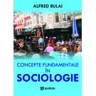 Paideia Concepte fundamentale in sociologie - Alfred Bulai Studii sociale 62,00 lei 0799P